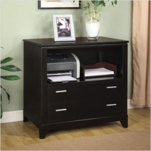 Wynwood - Palisade File Cabinet in Dark Sable
